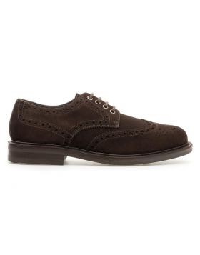 Derby Uomo  Brogue